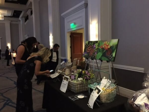2017 Apex Awards - Silent Auction